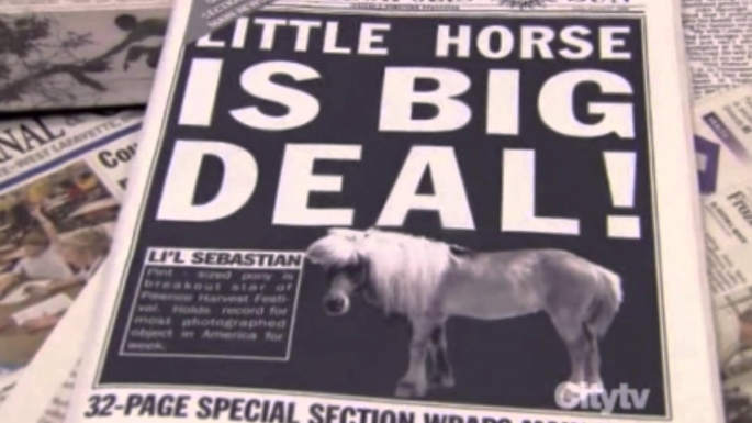 lil-sebastian newspaper