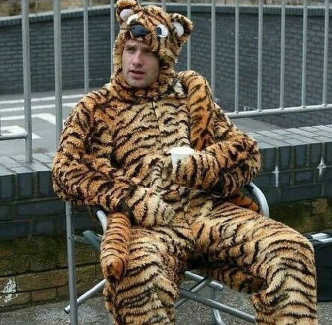 rick tiger costume the walking dead.jpg